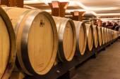 Interior of the Vivanco winery museum — ストック写真
