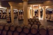 Interior of the Vivanco winery museum  — Stockfoto
