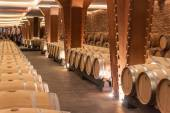 Interior of the Vivanco winery museum — Stock Photo