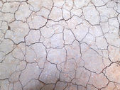 Close-up of dry soil in arid climate — Stock Photo