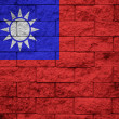 Taiwan Flag painted on grunge wall — Stock Photo #61928143