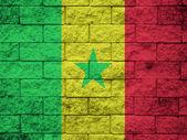 Vlag van Senegal geschilderd op een grunge bakstenen muur — Stockfoto