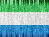 Sierra leone flag paper texture — Stock Photo