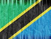 Tanzania flag paper texture — Stock Photo