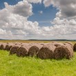 Haystacks on a meadow — Stock Photo #59993459