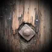 Old metallic nail in wood — Stock Photo
