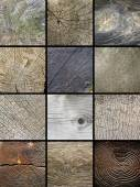 Collage of wooden cut trunks textures — Stock Photo