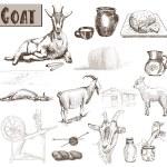 Постер, плакат: Breeding goats