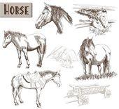 Silhuetas de cavalos — Vetor de Stock