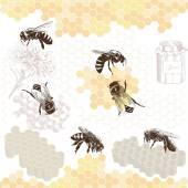 Api da miele su un pettine — Vettoriale Stock
