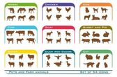 Pets and farm animals icons — Stock Vector