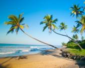 Untouched tropical beach in Sri Lanka — Stock Photo