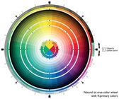 Doğal ya da gerçek renk tekerleği ile 4 birincil renkleri web sanatçılar ve bilgisayar tasarımcıları için — Stok Vektör