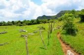 National Park Vinales — Stock Photo