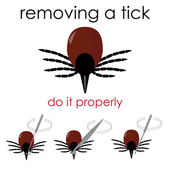 Removing a tick — Stock Vector