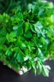 Fresh Greens with Lettuce, Mint, Dill and Parsley, Spring onion — Stock Photo