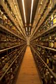 World's largest beer bottle collection at Carlsberg museum brewe — Stock Photo