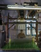 Silk sari weaving, looking through the threads. — Stock Photo
