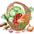 Basket different Vegetables — Stock Vector #54002219