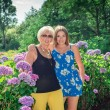 Two women of different generations standing near flowers hydrangeas. Mother and daughter. Grandmother and granddaughter. — Stock Photo #64677803