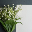 Card with fresh flowers lily of the valley — Stock Photo #66151083