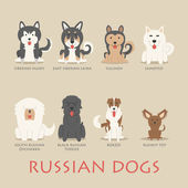 Set of russian dogs — Stock Vector