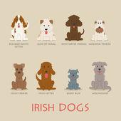 Set of irish dogs — Stock Vector