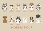 Set of nordic dogs  — Vector de stock