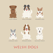 Set of welsh dogs — Stock Vector