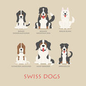 Set of swiss dogs — Stock Vector