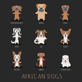 Set of african dogs — Stock Vector