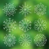 輪郭線の花のセット — ストックベクタ