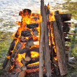 Fire, burning logs — Stock Photo #65807479