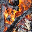 Fire, burning logs — Stock Photo #65808341