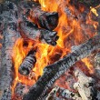 Fire, burning logs — Stock Photo #65808517