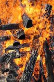 Fire, burning logs — Stock Photo