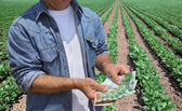 Agricultural concept, farmer, money and field — Stock Photo