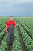 Farmer or agronomist in soy field — Stock Photo
