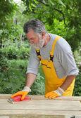 Home renovation, sanding wooden door — Stock Photo