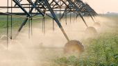Agriculture, soybean field watering system in sunset — Stock Photo