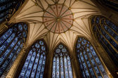 York Minster kapitelhuset tak — Stockfoto