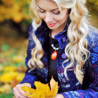 Young woman with autumn leaves in hand and fall yellow maple gar — Stock Photo #56124961
