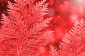 Christmas background red  — Stock Photo