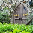 Old wooden door with stone wall — Stock Photo #52154279
