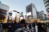 Tokyo, Japan - November 28, 2013: Crowds of people crossing the center of Shibuya district — Stock Photo