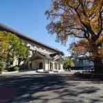 Tokyo, Japan - November 22, 2013: People visit Tokyo National Museum — Stock Photo #56777883
