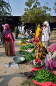 Jodhpur, India - January 2, 2015: Indian people shopping at typical vegetable street market in India — Stock Photo