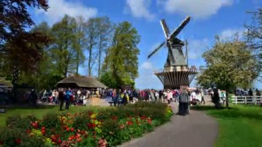 Lisse, The Netherlands-  May 7, 2015: Old windmill with many people in famous garden in Keukenhof. — Stock Video