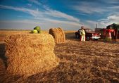 Scarecrow in the farmland oldcar — Stock Photo