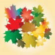 Maple autumn falling leaves, vector illustration. — Stock Vector #54748961
